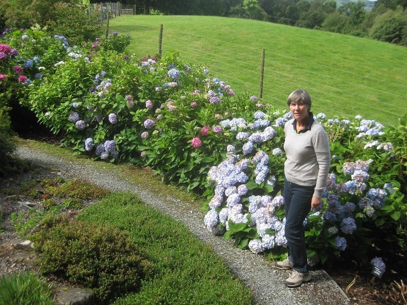 Sue Dawes mit Rhododendron